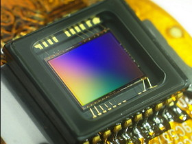 [鳥專欄]大,真的比較好:淺談數位相機的感光元件(中)