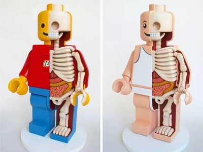 30 款趣味解剖公仔,原來芭比娃娃、瑪莉歐、樂高人的骨骼長這樣!