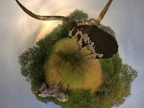 好有趣的星球化攝影,完全顛覆看世界的方式,你也能自己做!