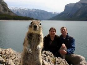 2012年精彩回顧,22張超受國外網友歡迎的照片,你看過那些?