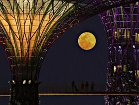 2013 年度超級月亮錦集,一解中秋颱風天的賞月之苦