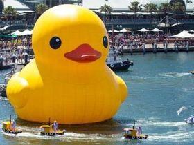 黃色小鴨可以這樣拍! 橡皮小鴨的世界寫真
