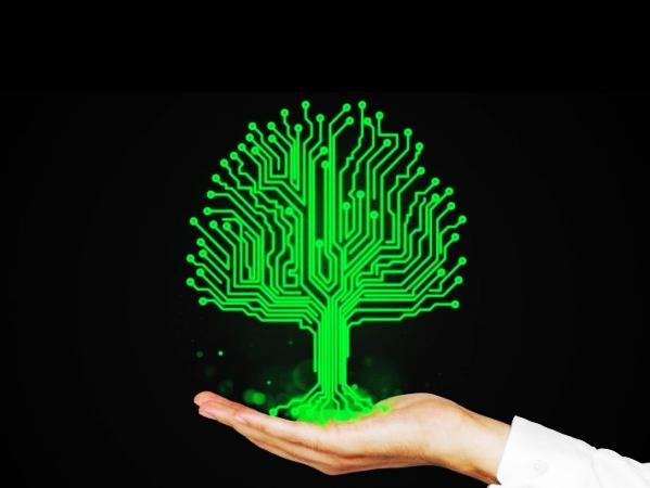 阿凡達:植物網際網路