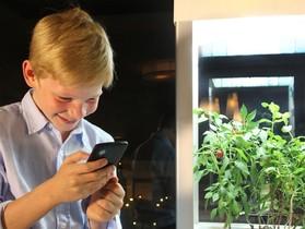 用手機也能種好植物!迷你溫室 Niwa 幫你接管所有的盆裁作物