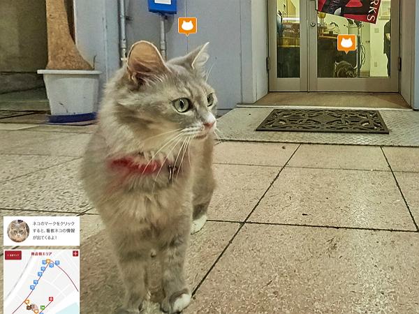 日本尾道市推出貓眼街景地圖,可愛到要被融化!