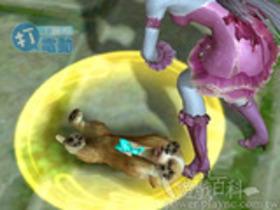 【AION 2.0】【寵物飼料全覽】液體類