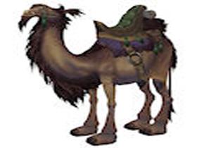 【魔獸世界】【座騎入手攻略】駱駝與其他特殊