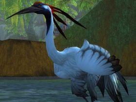 【魔獸世界】【5.0】獵人馴獸新品種:鶴