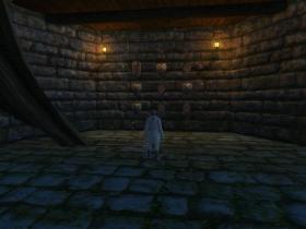 【裂痕】【解謎成就】【日暮森林】護盾之牆