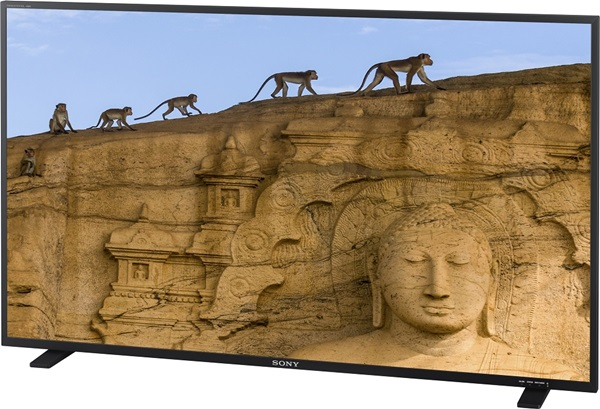 Sony 發表 55 吋顯示器 PVM-X550,採用 4K 解析度有機 EL 面板