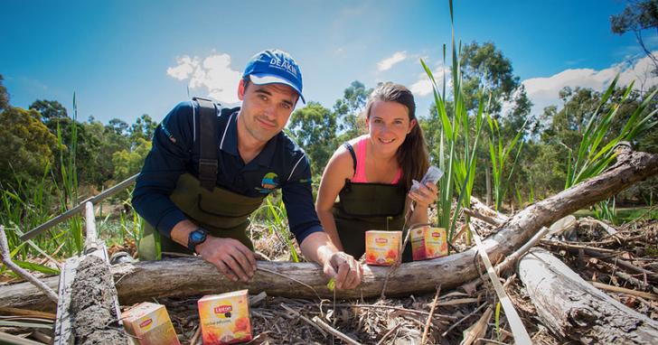 科學家監測濕地的固碳能力,用的工具竟然是我們每天會喝的茶包!
