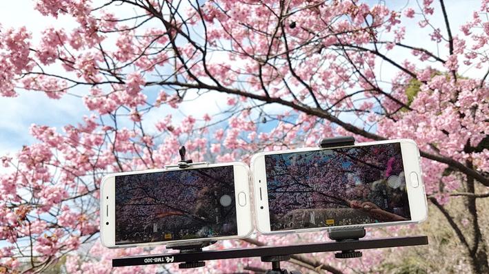 [Now, It's Clear]我在東京和OPPO R9s & R9s Plus初春賞櫻去
