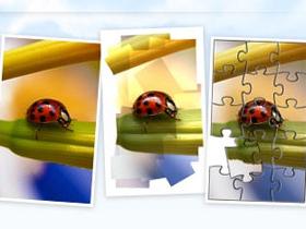 Picnik :網路相簿 就直接用網頁修圖吧