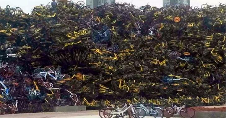 廈門新地標:由上萬輛被沒收的共享單車所堆成的共享單車墳場