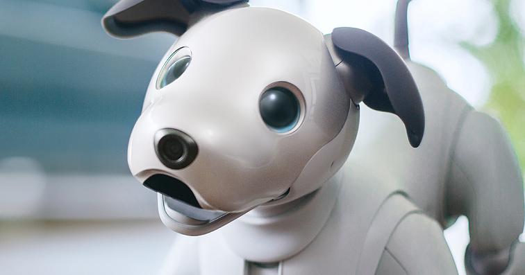 即將開放預購,Sony 超可愛的機器狗 aibo 來了