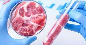 吃肉也會加劇溫室效應,「乾淨的肉」能拯救地球嗎?