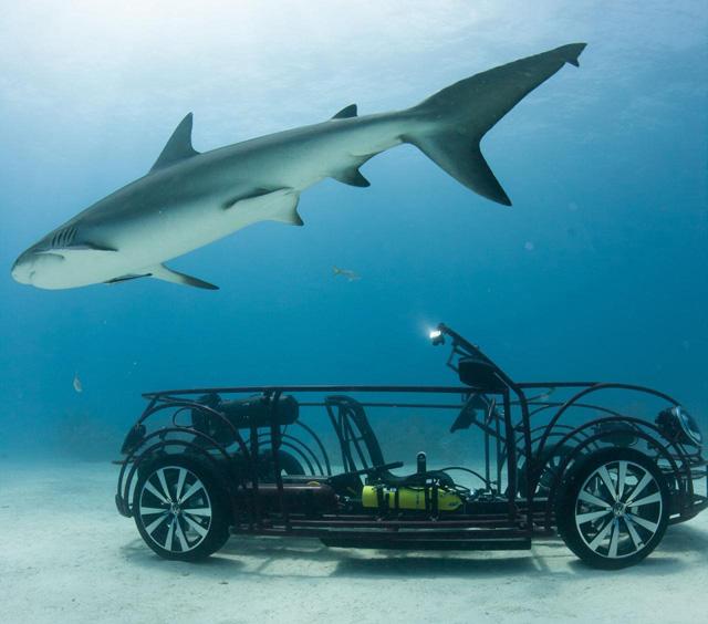 VW敞篷 Beetle海底鯊魚觀察車!會不會變成大白鯊第五集?這樣安全嗎?