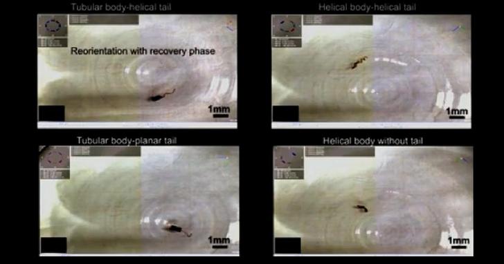 瑞士研究人員開發柔性奈米機器人,可在體內運送藥物到體內難以達到的地方