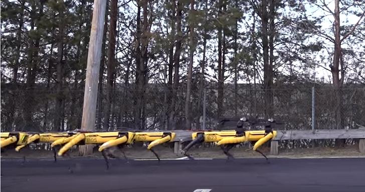 來聽10隻機械狗行軍的聲音,會讓你想到世界末日