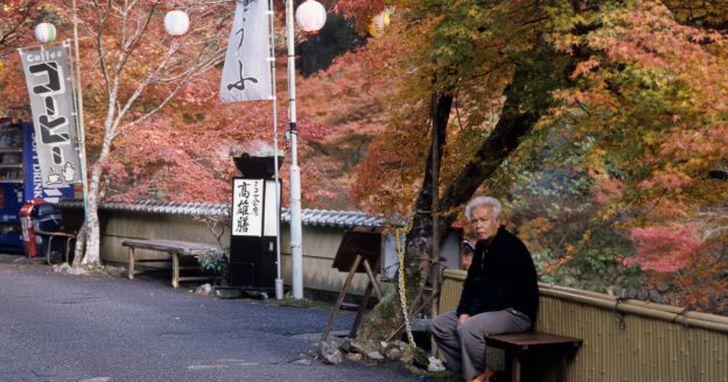 退休金不夠用,日本政府呼籲人民多存 2 千萬日圓再退休
