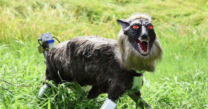 機器狼和外骨骼可能是日本未來社會的基礎設備