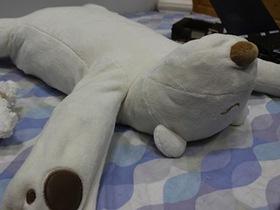 打鼾救星!陪睡小熊推你頭、治打呼,實用的科技好物