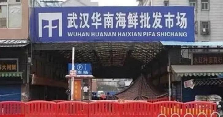 「毒窟」其實被冤枉?中國媒體披露:研究證實新型冠狀病毒並非起源於華南海鮮市場