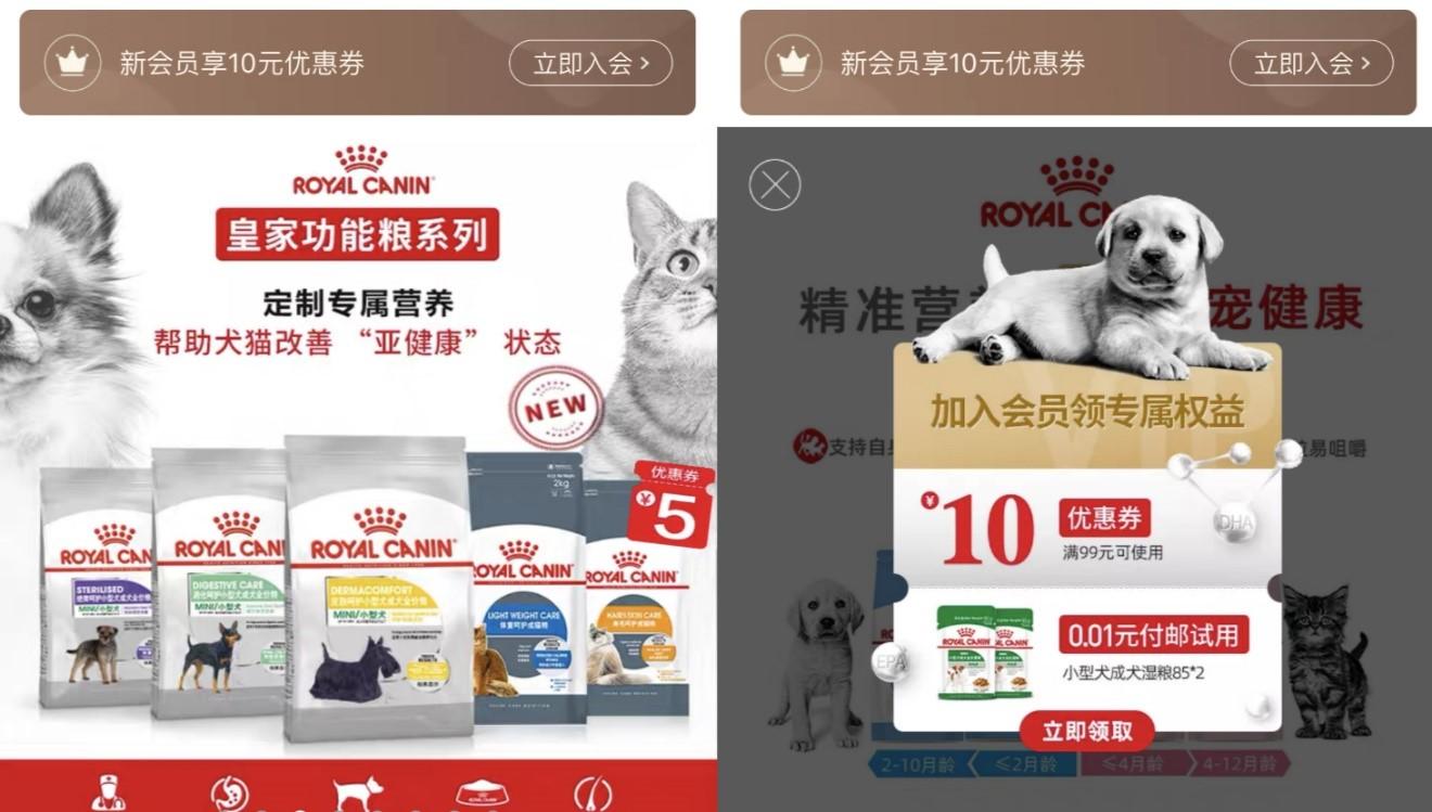 寵物健康新趨勢:功能性寵物糧、減肥私教服務受熱捧