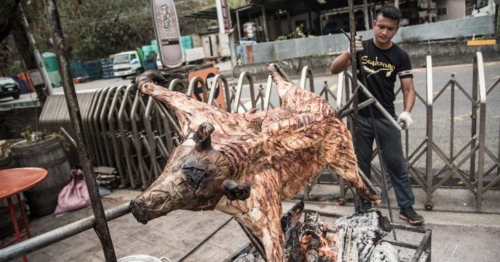烤豬也要證照,南投首創原住民烤豬職人培訓班開放報名