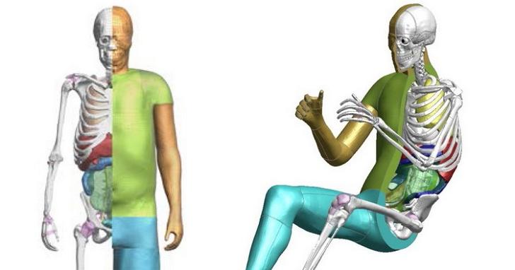 TOYOTA 虛擬撞擊測試人偶免費公開,希望吸引更多人投入汽車安全研究