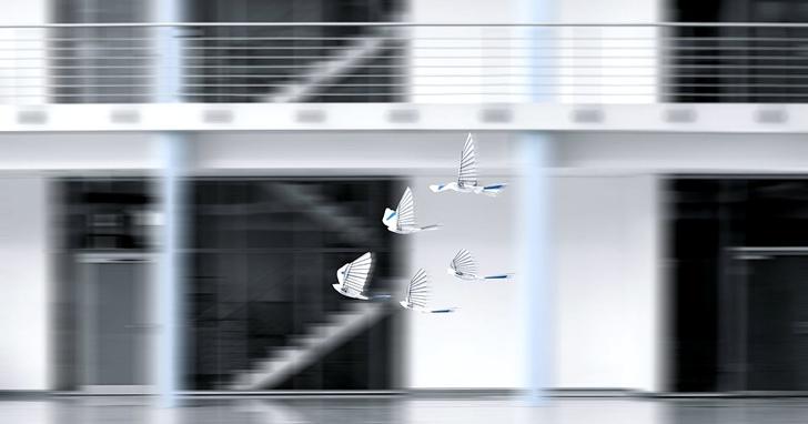 這隻無線電仿生機器人能像鳥一樣飛,還可自動規避障礙物