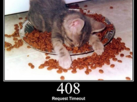 超可愛貓咪演出!教你認識網頁錯誤、網頁狀態代碼