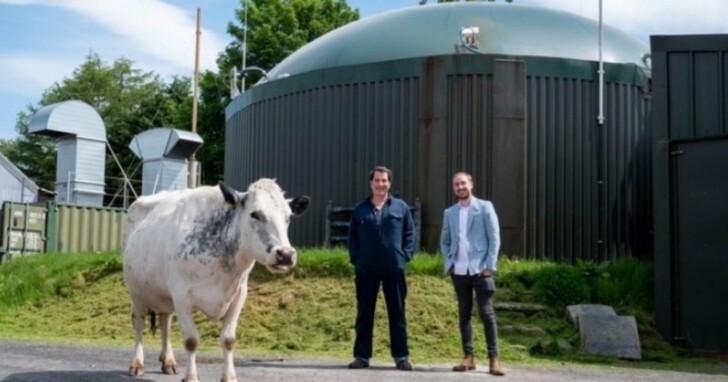 響應比特幣再生能源,英國農民改用「牛糞」發電挖礦