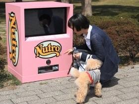 世界第一台!給狗狗自行使用的自動販賣機現身