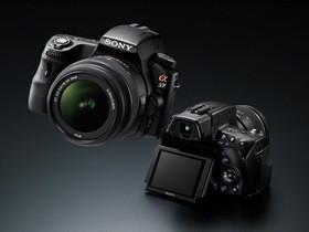 Sony A37 入門單眼:人像自動取景、翻轉螢幕和實拍照片