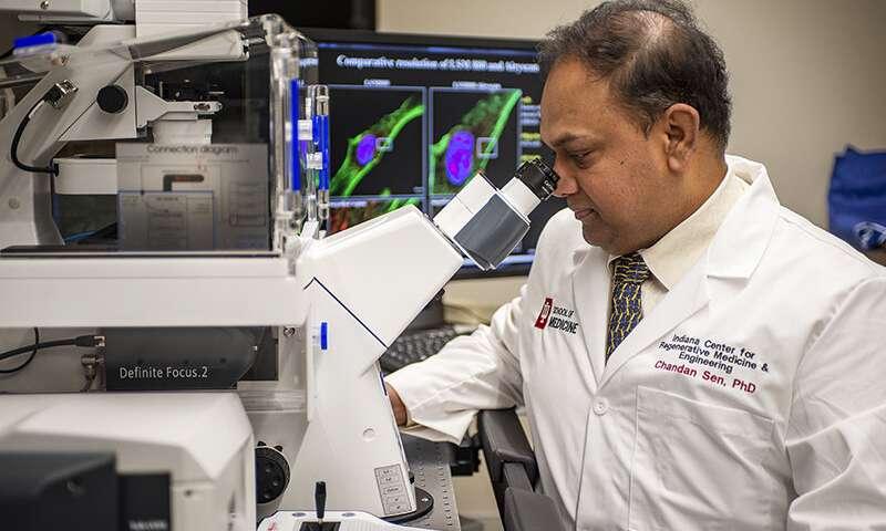 科學家研發新傷口敷料,使用弱電場來對抗抗生素耐藥性細菌感染