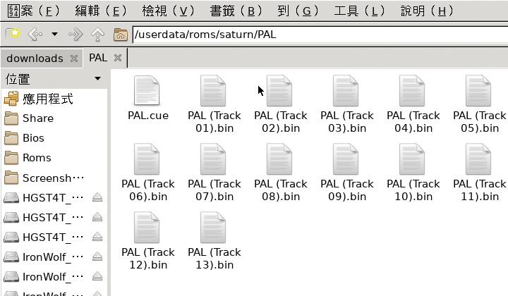 bin + cue格式ISO檔需要全部複製到Roms的對應資料夾。